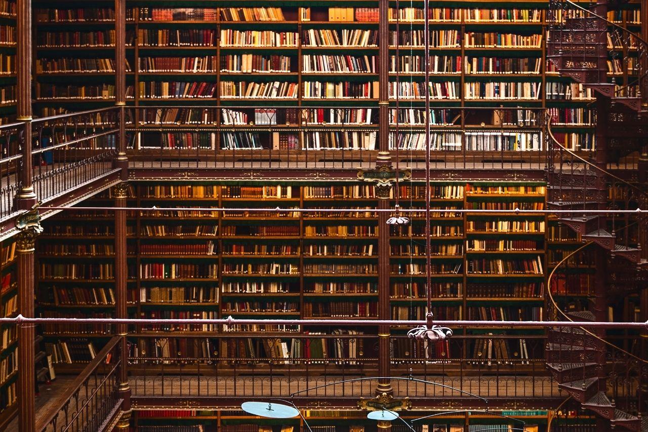Travailler dans une bibliothèque _ une librairie