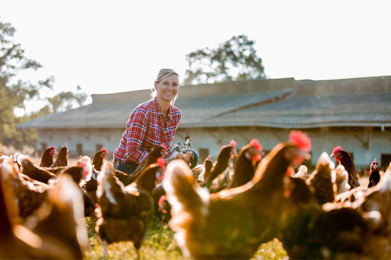 Travailler dans une ferme